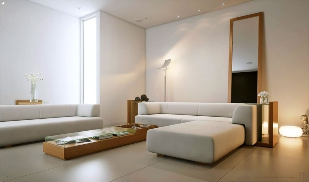How can you organize your home with minimalist living for Minimalist lifestyle your home