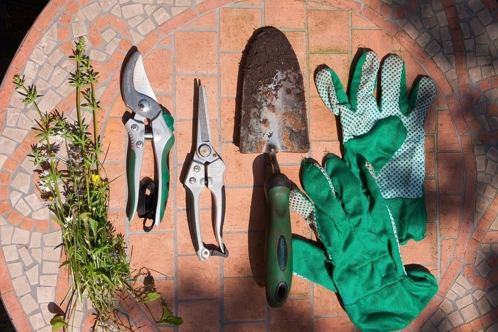 Gift for gardener