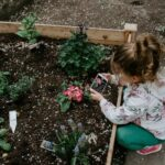 6 Things You Need to Know About Your Garden's Soil