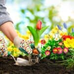 7 Benefits of Gardening and Lawn Care Work During a Time of Uncertainty