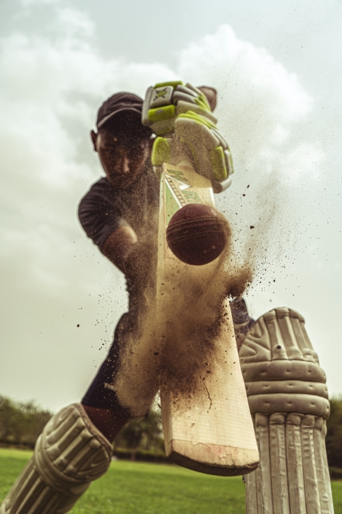 backyard cricket pitch