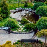 6 Tips to Create a Beautiful Backyard Pond
