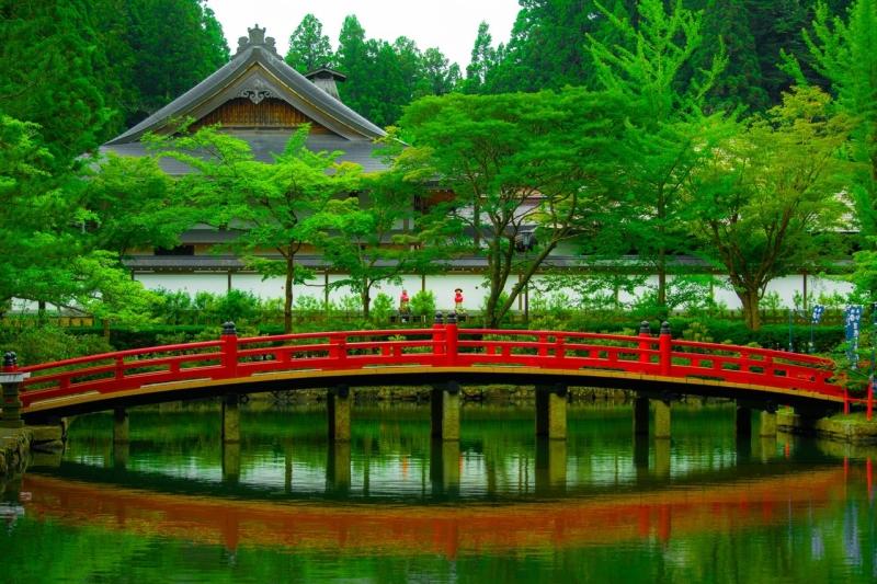 small bridge pond