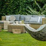 4 Cool Things That Belong in Your Backyard