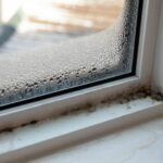 5 Unknown Places Where Mold Grows in Your House