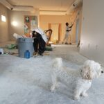 4 Excellent Tips to Renovate your Home on a Budget