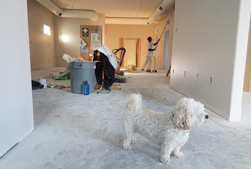 home renovation coloring